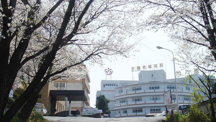 画像:春には桜が満開になります